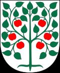 Teamlogo SC Amriswil